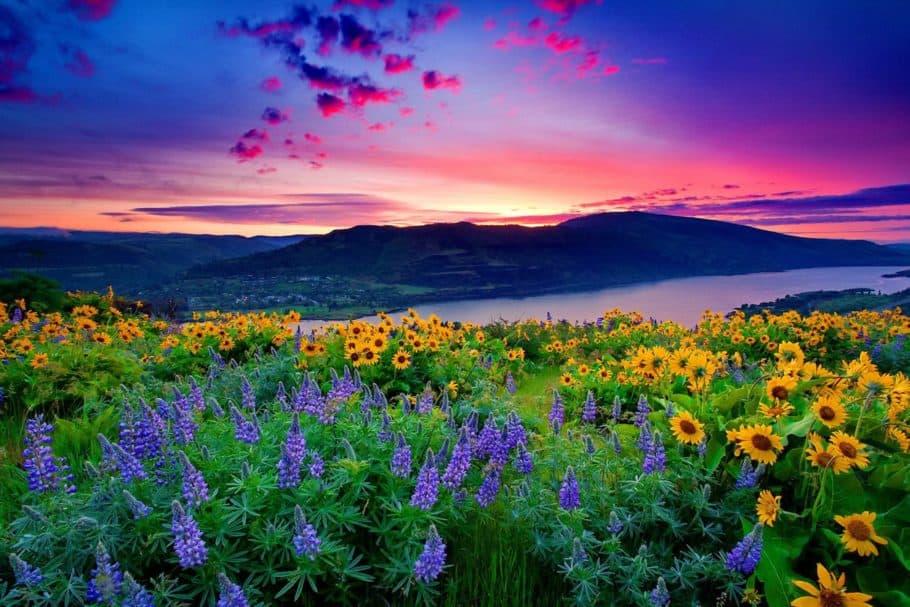 beautiful scenery wallpapers 1